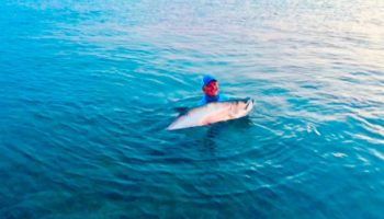 Beautiful tarpon caught at Bahia Honda.