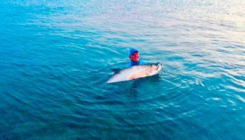 Beautiful tarpon caught at Bahia Honda.